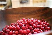 収穫したジューンベリーの果実