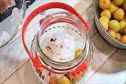 保存瓶に梅と氷砂糖を約半量ずつ入れる